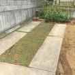 駐車場の改良、開墾?