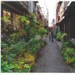 【月島再開発問題】「月島三丁目南地区第一種市街地再開発事業」の法的問題点。H30.3.13東京地裁第419号法廷で意見陳述した内容