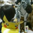 TACHIKAWA動物園