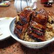 志摩市磯部の鰻丼