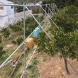 防風ネットの工事  斜め支柱取付