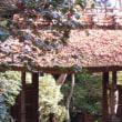 祇王寺の庵