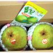 旬の秋の味覚(^^♪幻の梨、珍しい梨、香りがよい美味しいと評判の梨「香梨(かおり)」