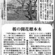 まもなく桜が開花!/毎日新聞「ディスカバー!奈良」第57回