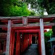 2018 祐徳稲荷神社の朱塗りの舞台が青空に映える  《佐賀県鹿島市》