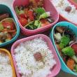 鶏肉&パプリカ&青梗菜炒め弁当