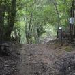 まち歩き西0958 京都一周トレイル 西山コース 29