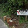 壱岐島オルレ 第3弾♪~最高峰岳の辻 212.8m 登山~1日目①