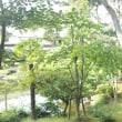 六華苑、庭園散策now!