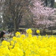春だ! カメラをもって植物園へ行こう