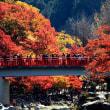 紅葉の香嵐渓