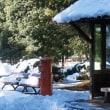 公園の雪を楽しむ(Ⅸ)