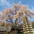 Gifu / Rinyouji Temple