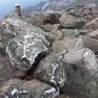 茶臼岳に登る