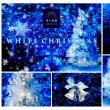 まもなくクリスマス・・・青の洞窟【田園調布 鵜の木 東急沿線の不動産は城南ハウジングへ】