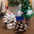 クリスマスの準備(^^)