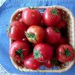 あま~いフルーツトマト