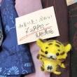 夏の着物や帯が並びました!※4月末まで 福岡の質屋ハルマチ原町質店