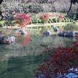 紅葉狩り1 本谷温泉