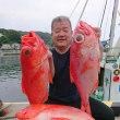 7月12日(木)新島キンメ釣果
