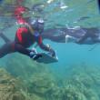 大阪ECO海洋動物専門学校の臨海実習