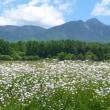 6月の八ヶ岳西麓・・・広域農道八ヶ岳エコーラインから・・・山を見る