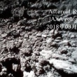JAXA:releases images sent from asteroid rovers 2018年09月27日
