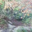 七ツ森ツアーは遊歩道で。