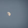 綺麗な夕陽 と 静かな月…☽
