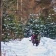 冬の馬橇体験  ノースポールスティブル
