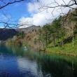 オコタンペ湖から新種の好酸性微生物