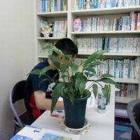 涼しい自習室開放中‼