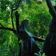 森の中の彫刻