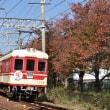 11月11日の神戸電鉄(さくら紅葉の長田にて)