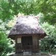 リアル「鬼太郎の家」??