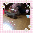 母の部屋へ〜☆