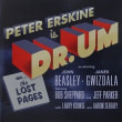 新しい天気予報 ON CALL  /  peter erskin & the DR. Um Band