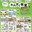 【5/12pm19~申し込み開始!】今年も「わんぱく教室」行います! in茨城空港SSF