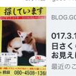 017.10.17(火)  日曜日ノラの猫ちゃんを保護され避妊手術をされていますリカママさんご夫妻がお見えになりました