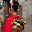 ヘアメイクしてもらった孫娘の十三詣りに大喜びのパパ・ママそしてダブルジイジとバアバです。