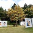六甲ミーツ・アート芸術散歩2017・・・2