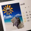 ウチの子月別卓上カレンダー 乙女猫日記さん