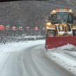 雪❄︎道は大変、楽しい散歩