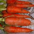 夏野菜の収穫とヤマモモ、スモモの収穫