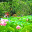 特別展「タイ ~仏の国の輝き~」