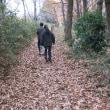 早野のハーブでクリスマス・スワッグ&リースをつくる/師走の早野風景