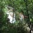 9/23 田立の滝