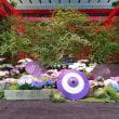 紫陽花が咲く羽田空港国際線ターミナル