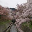 滋賀・三井寺