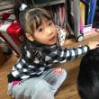 12月16日(土)の黒猫ジジィ 午前中は机の下に